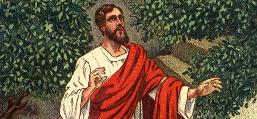 The Incarnation and the New Law of Grace