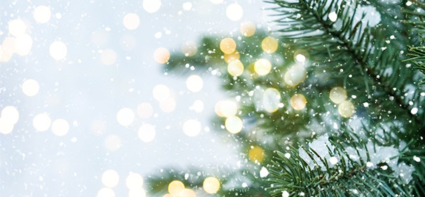 Oh, Christmas Tree!: The Christmas Tree as a Sign of Life in Christ