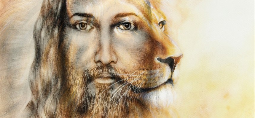 Book Review: Liberty Lions by Dan Leroy