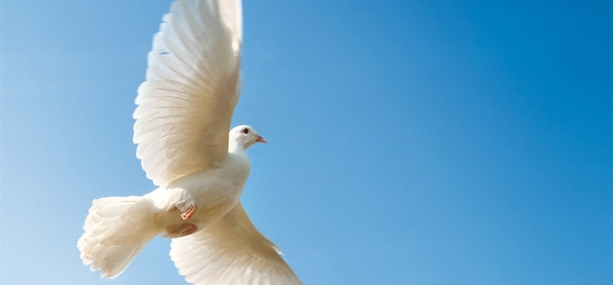 The Descent of the Holy Spirit | Third Glorious Mystery