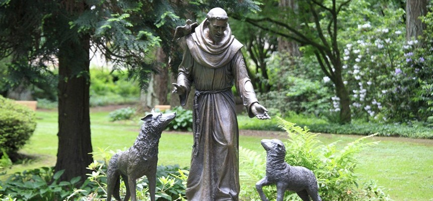Let's Stop Reducing St. Francis' Feast Day to a Pet Blessing!