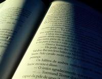 A Taste of Catholic Fiction Part 5