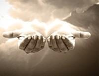 The Little Lamb's Prayer: Ten Years Later