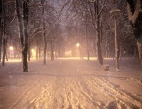 Snow-Filled Nights and Christmas Stars: Poems for the Season