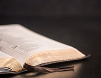 Looking At The Fullness Of The Bible In New Light