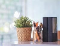 Book Review: Simple Mercies