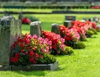 This Memorial Day, Honor Your Loved Ones By Visiting a Cemetery