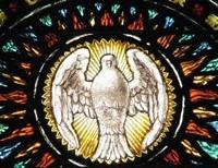 The Evangelization Imperative