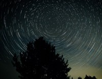 It's in the Stars?