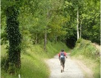 Looking for Christ on the Camino